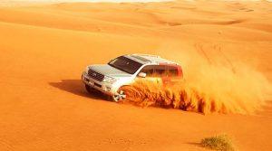 The Best Safari Adventures in Dubai